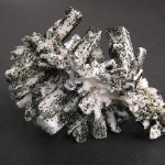 Periklin, Chlorit, Finaggl, Untersulzbachtal; Durchmesser 10 cm